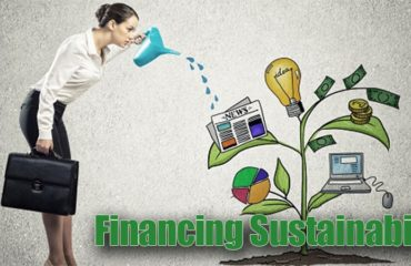 Financing Sustainability